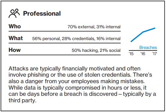 Data Breach Investigations Report - Professional